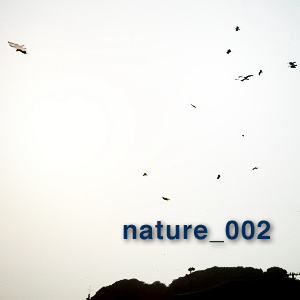 nature_002