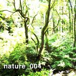 nature_004
